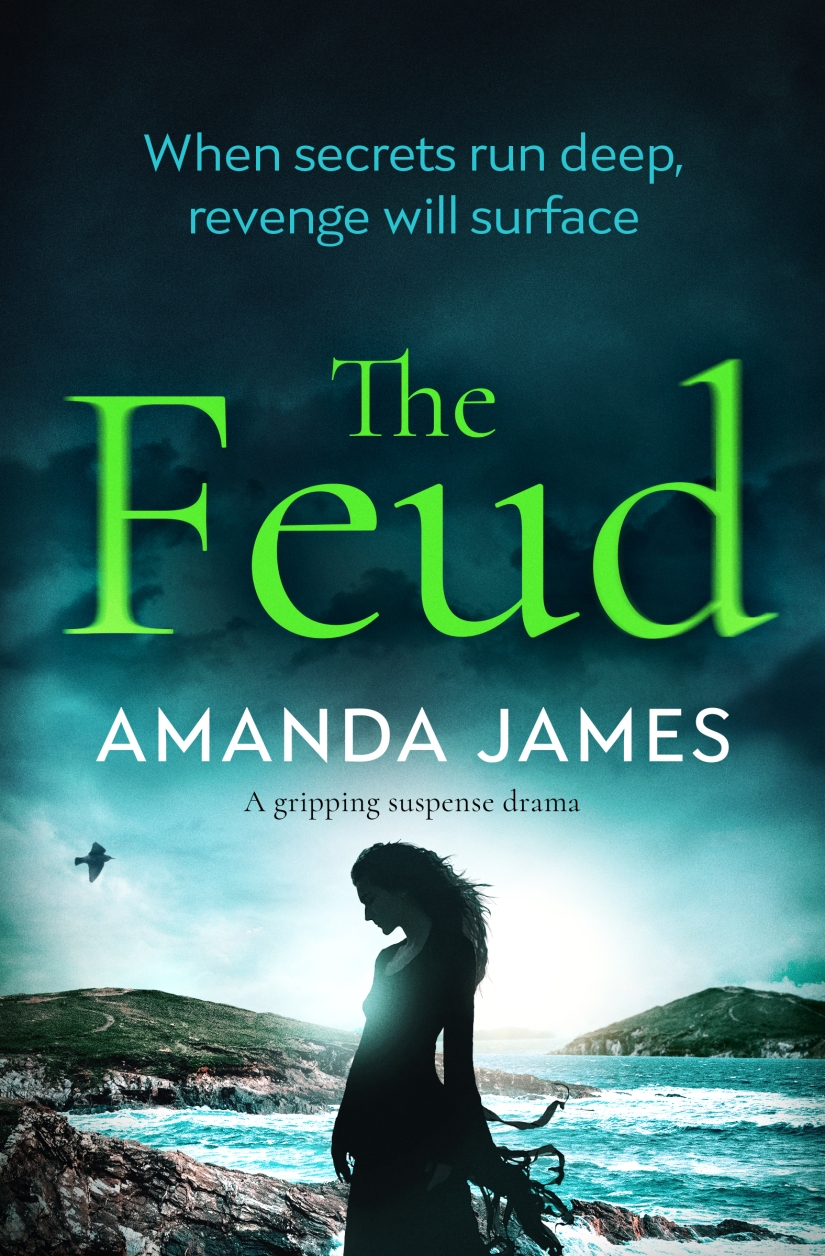 Amanda James - The Feud_cover